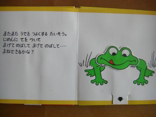 019_512.jpg